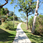 Walking track on the western side of Cremorne Reserve (259781)