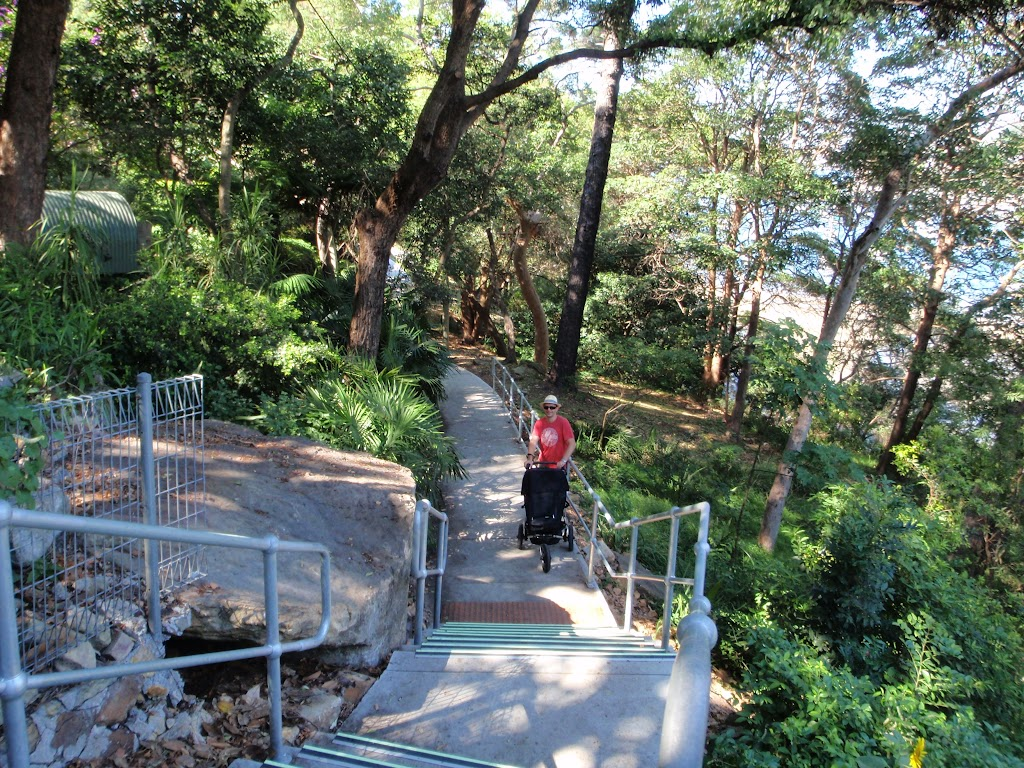 Steps in Cremorne Reserve (259865)