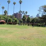 Milson Park (260711)