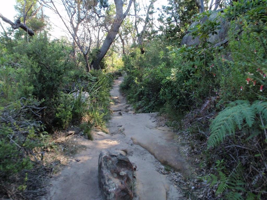 Walking along Chowder Head