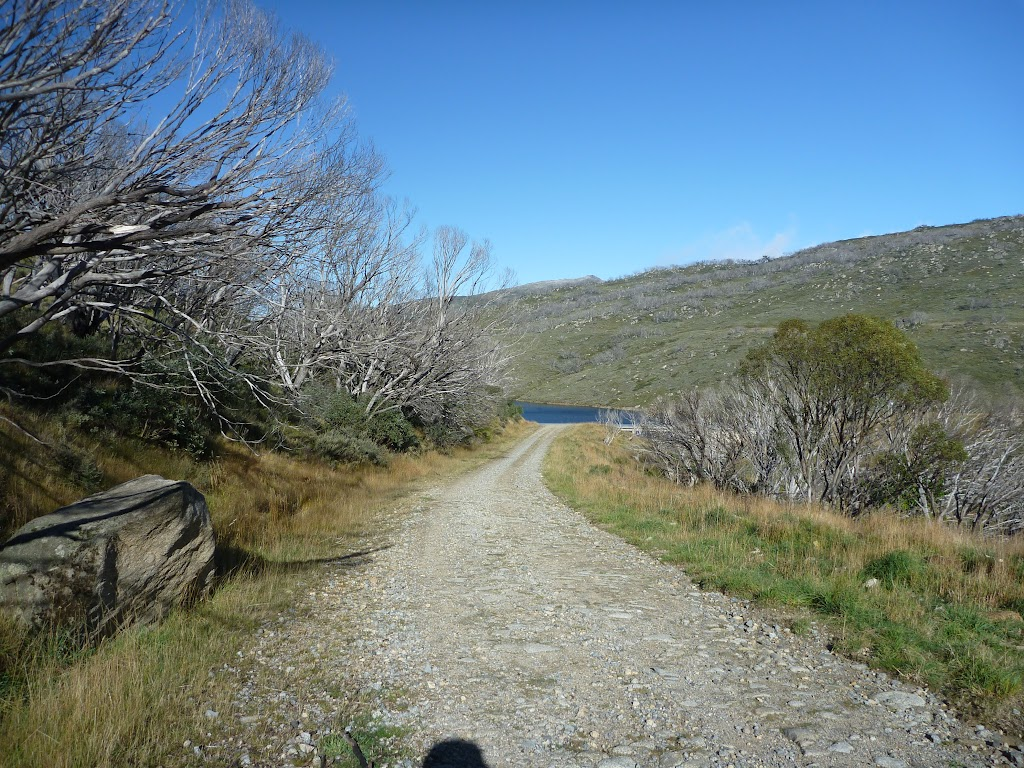 Management trail leading to Guthega Dam (262340)