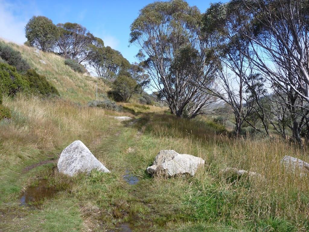 Guthega Rd management trail