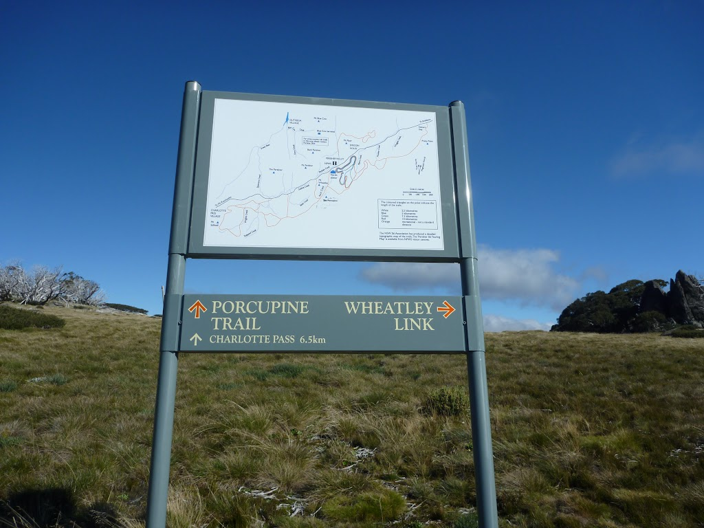 New signposte near the Int of Porcupine Trail and Wheatley Link Track (263930)
