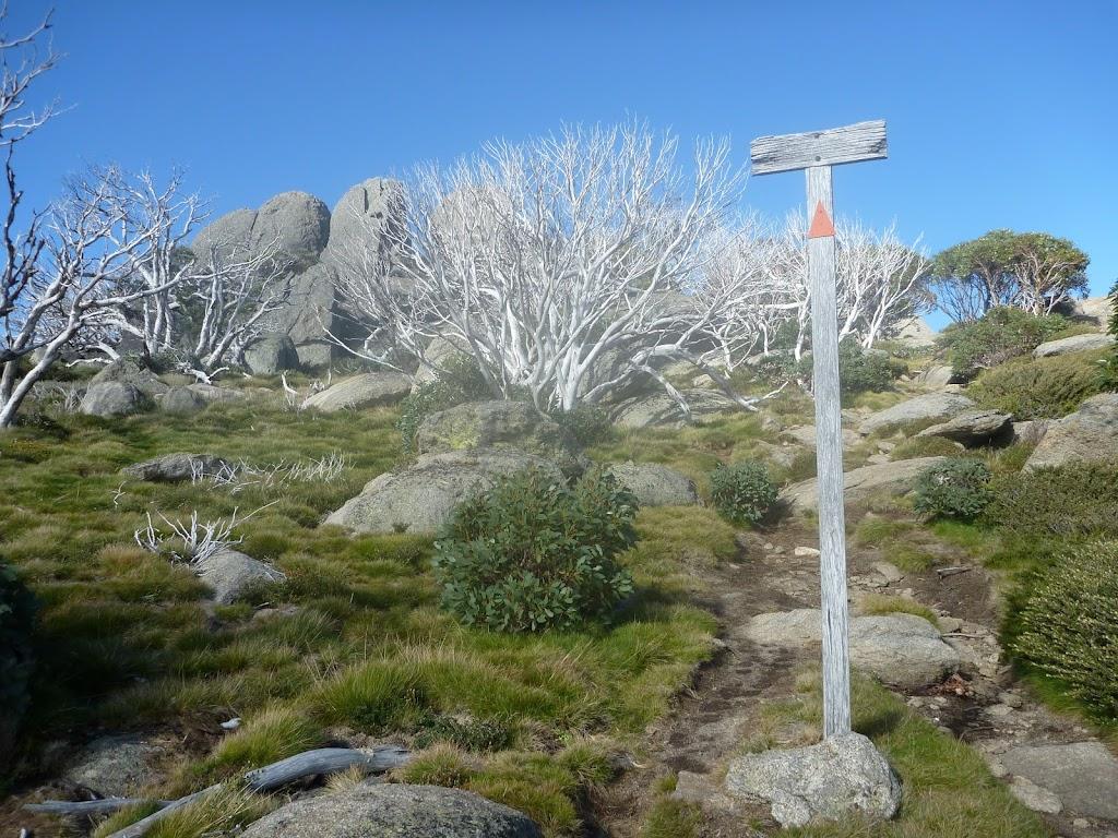 Walking up to Porcupine Rocks