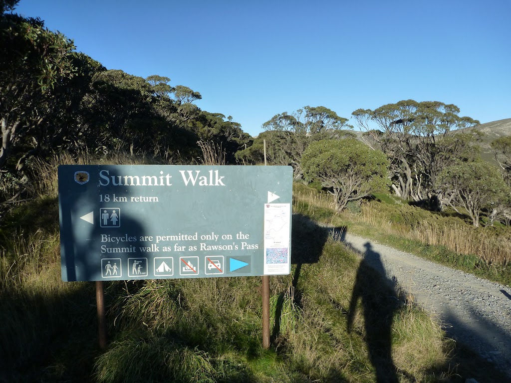 Summit Walk track head