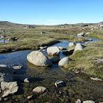 Merritts Creek (265658)