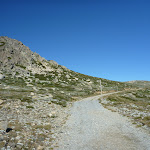 The old road near Seamans Hut (265910)