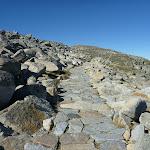 Rocky Path leading to Mt Kosciuszko (266228)