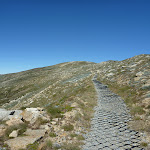 Main Range Track North of Mt Kosciuszko (266384)