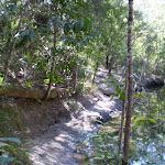 Warrimoo Track above the water