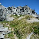 Path to top of Mt Townsend