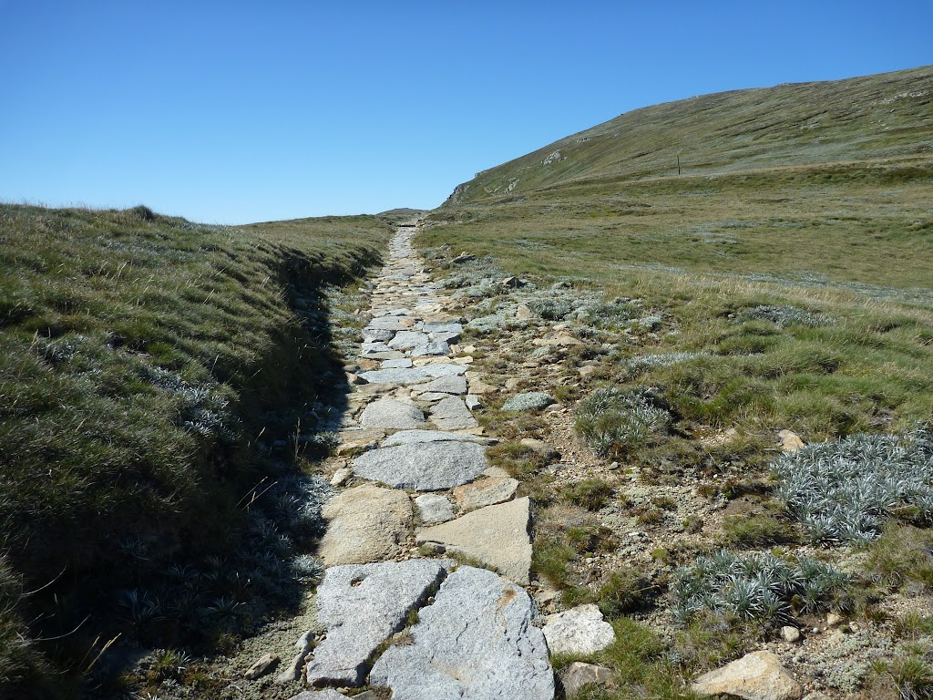 Stone path south of Lake Albina