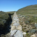 Stone path south of Lake Albina (267185)