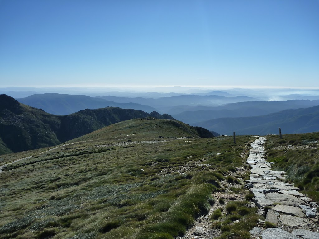 Looking west from the side of Carruthers Peak