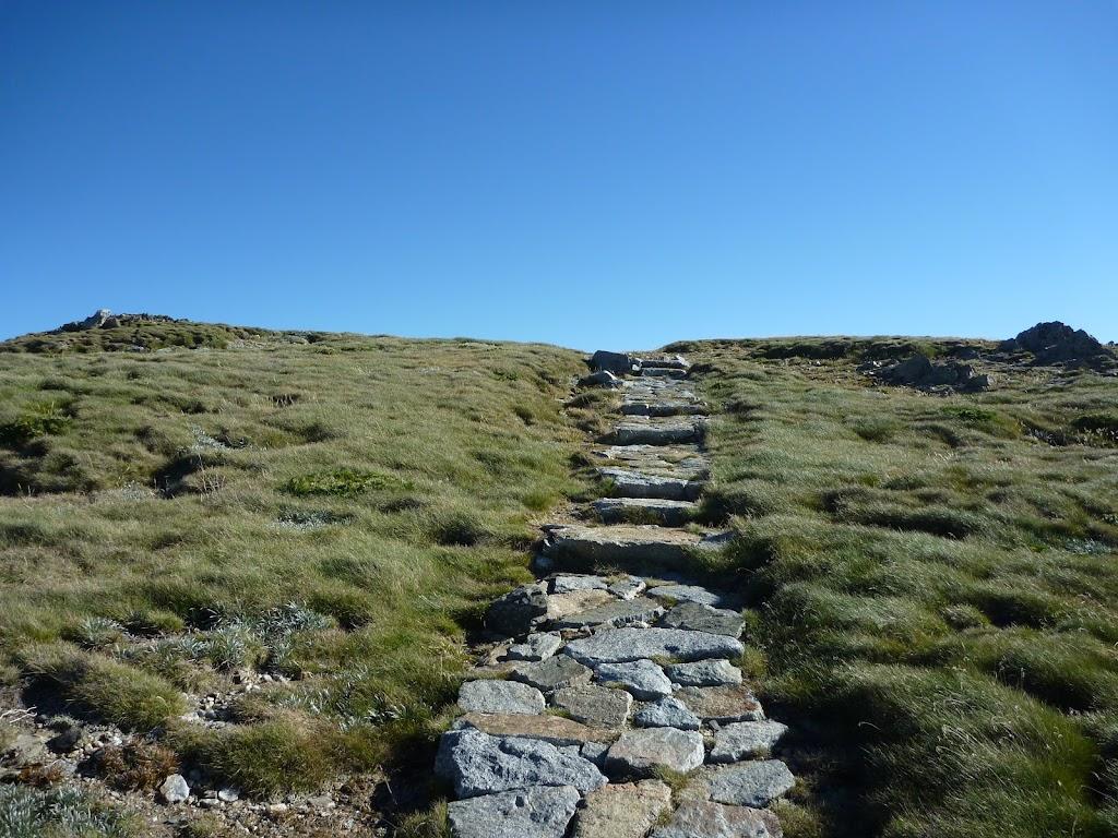 Main Range track on Carruthers Peak