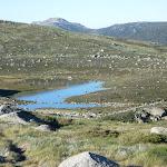 Headley Tarn from the Main Range Track (268334)