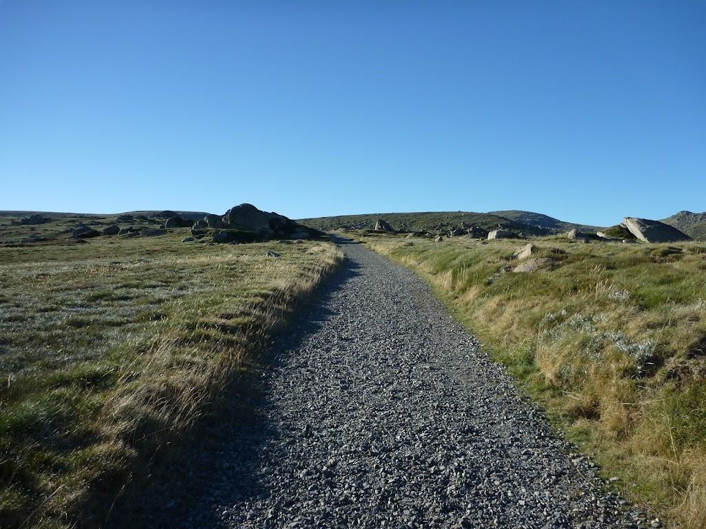 Walking along the Main Range Track