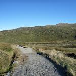 Main Range Track north of the Snowy (268535)
