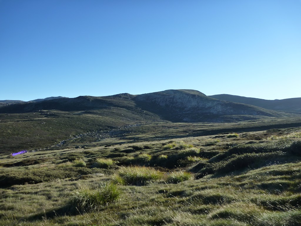 Looking across the Main Range (268538)