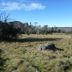 Wide grassy plain (269336)