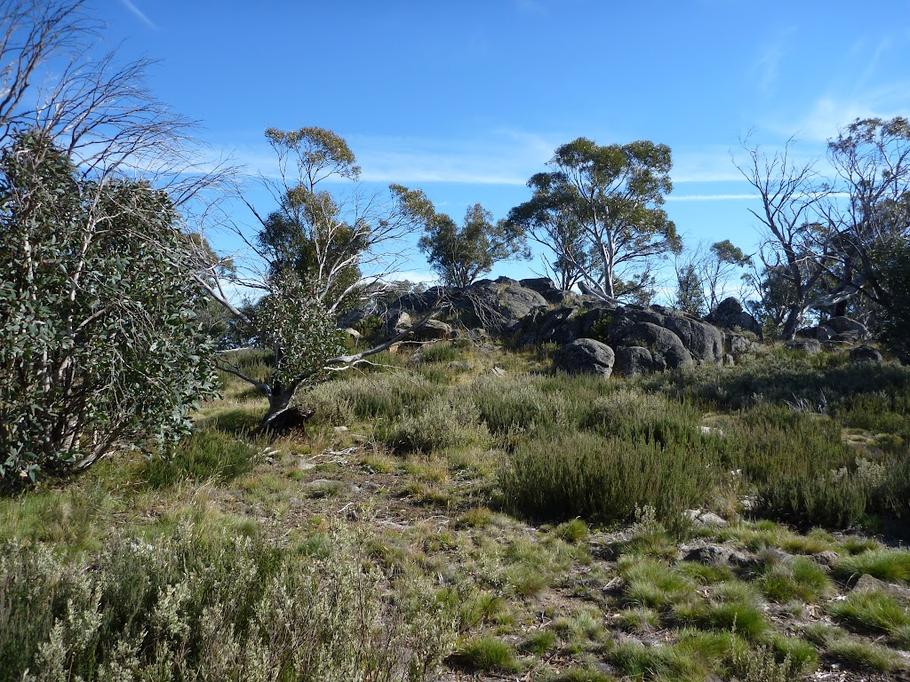 Granite outcrop on the Rennix Walk (269558)