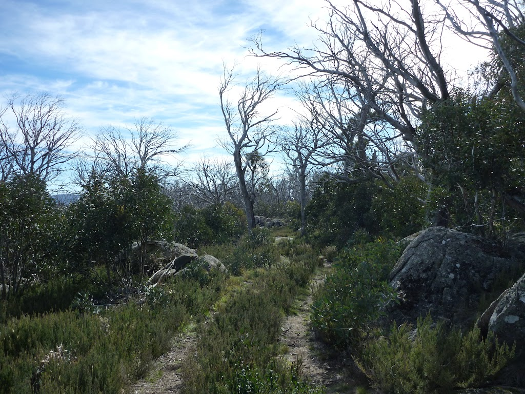 Rennix walk high on the ridge