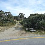 Mt Stilwell Track head at Charlotte Pass