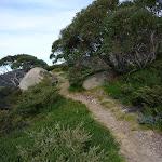 Mt Stilwell Track (270395)