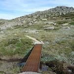 Small creek crossing near Mt Stilwell (270734)