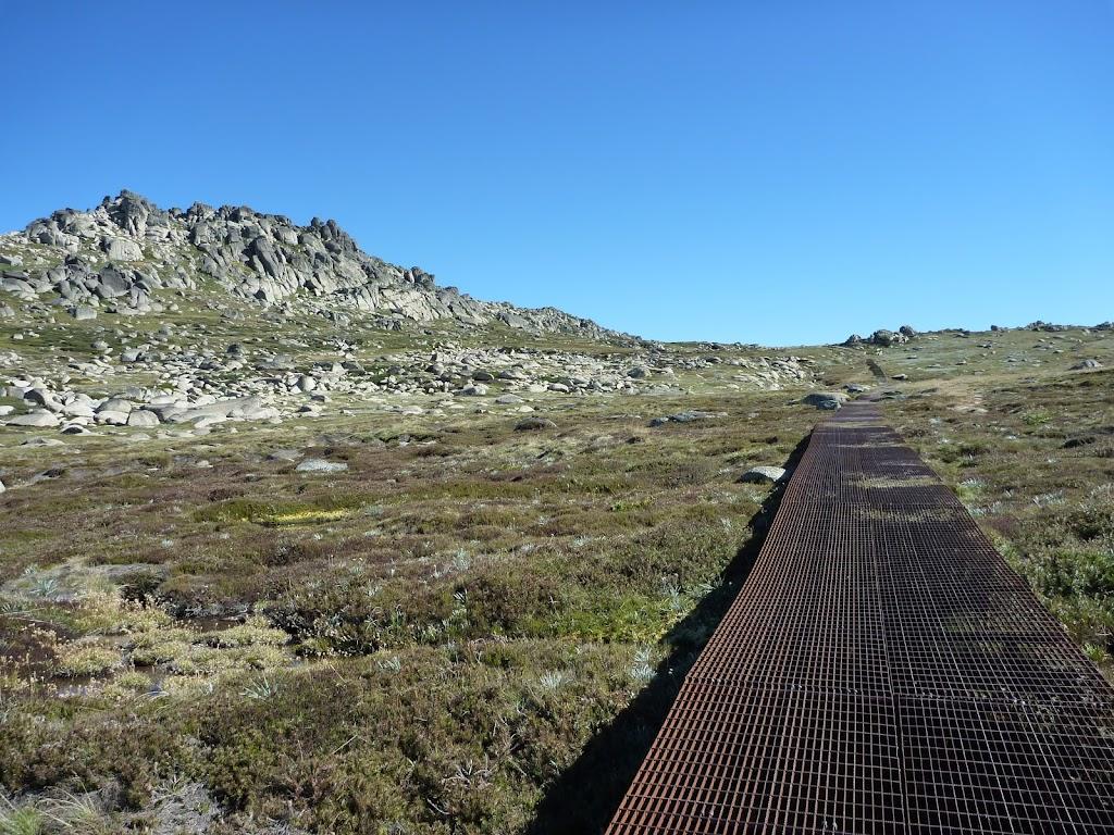 Mt Kosciuszko Walk (271574)