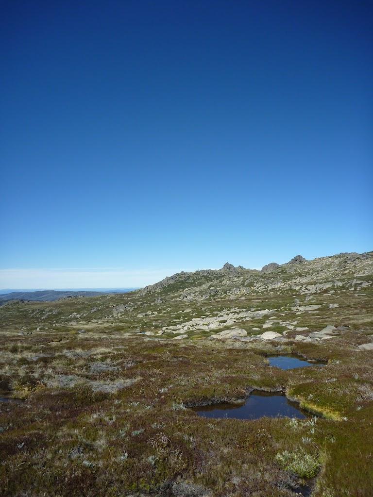 View across the Rams Head Range