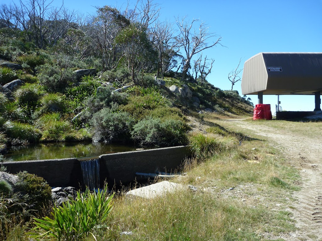Small dam near Gunbarrel Express on Merritts Traverse