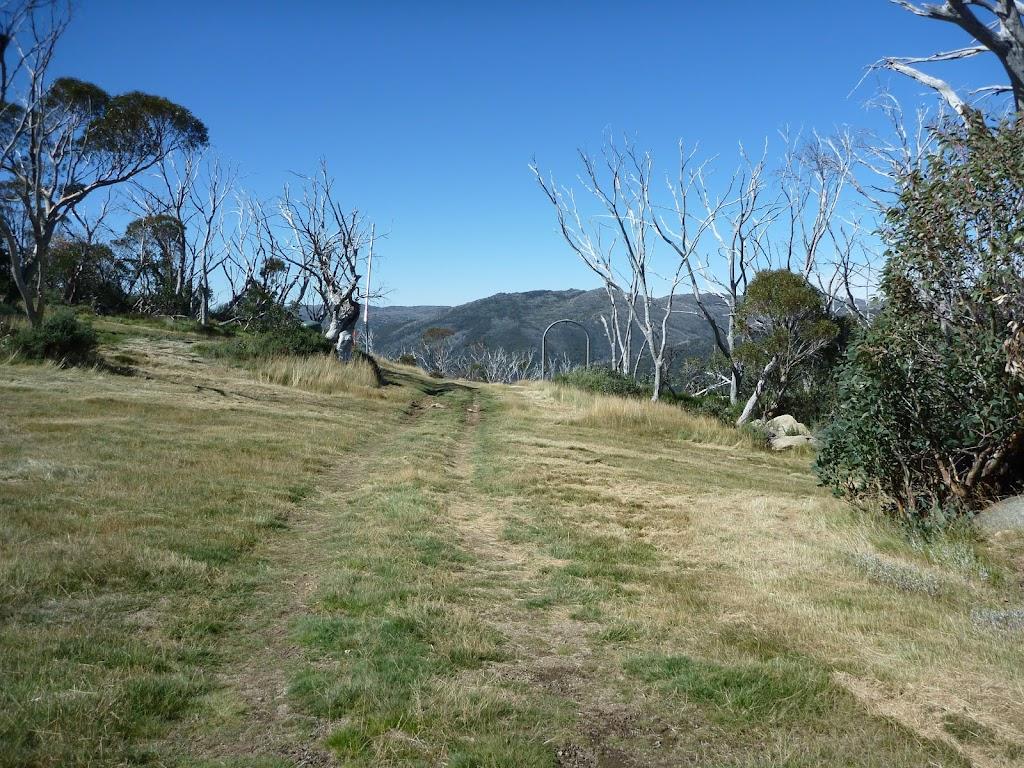 Walking along the grassy Merritts Traverse east of Gunbarrel Express
