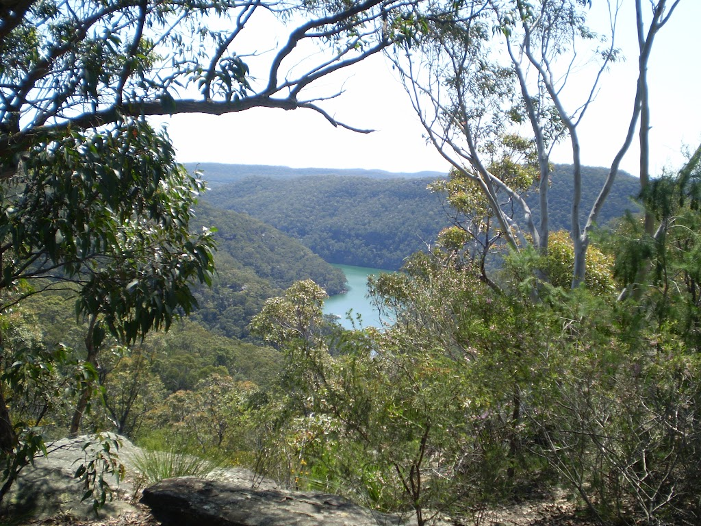 Wilkins Viewpoint, looking north into Cowan Creek