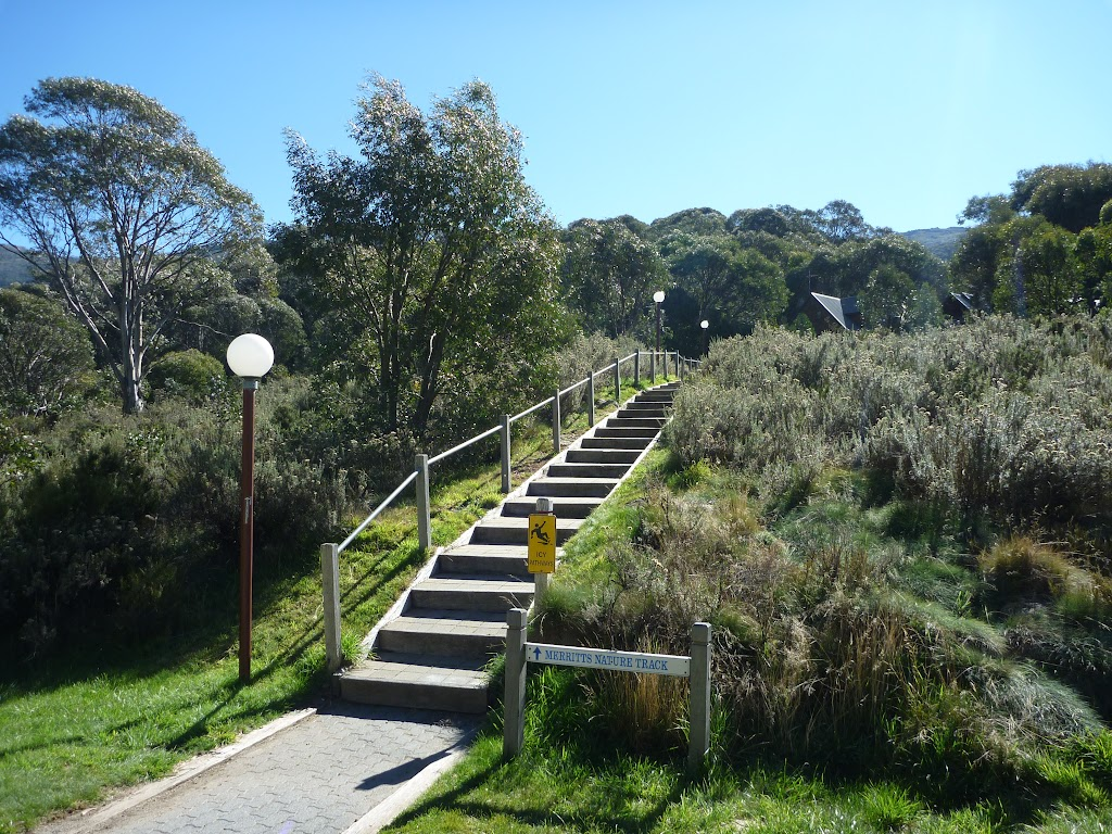 Heading up steps to Merrits Nature Track
