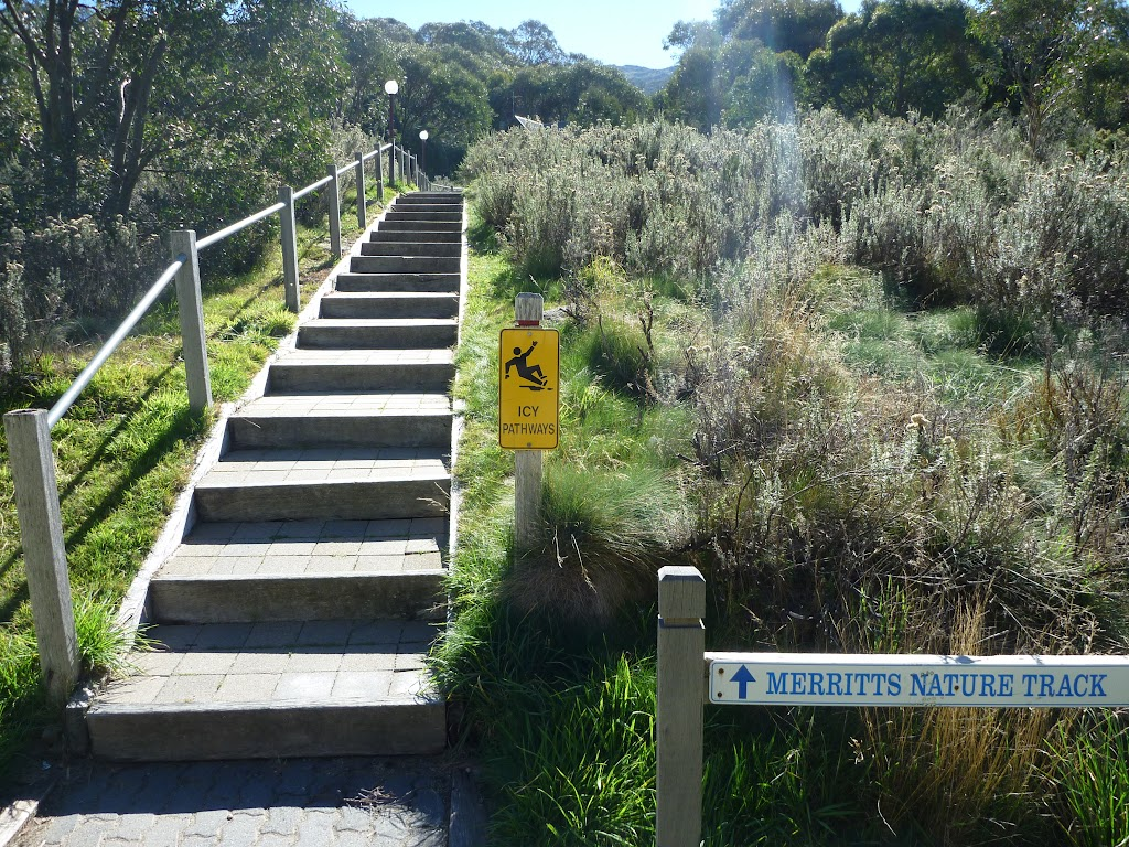 Merrits Nature Track steps at Friday Dr