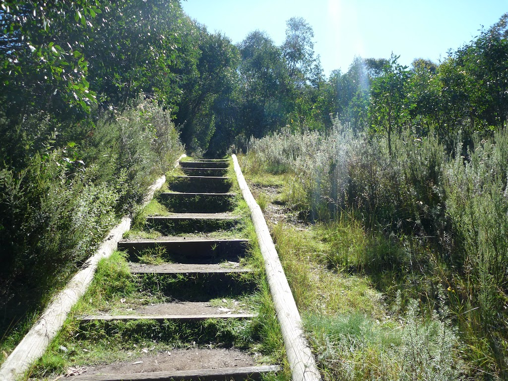 Steps beside the Bob sled run (273497)