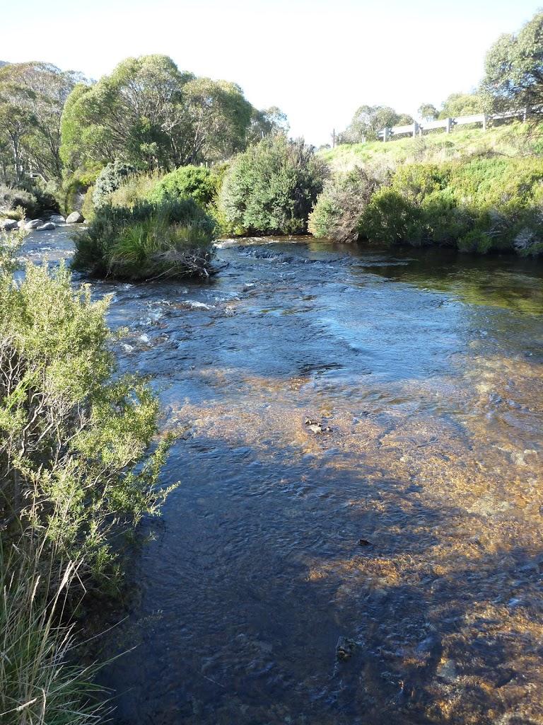 Thredbo River
