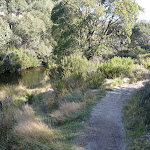 Riverside track  (273950)