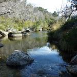 Thredbo River (274091)