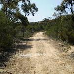 Smiths Creek Trail near Terrey Hills (27416)