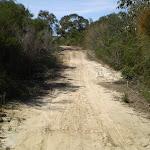 Smiths Creek Trail near Terrey Hills (27419)