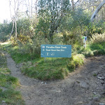 Int of Thredbo River and Golf Course Walk tracks