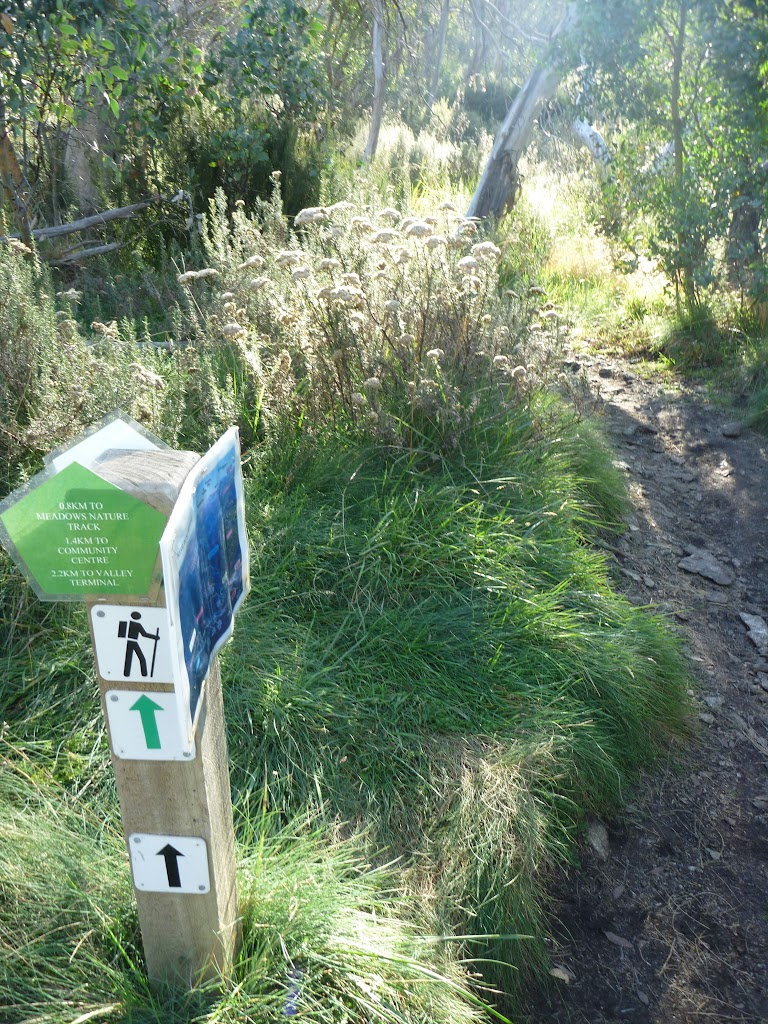 Golf Course loop track post