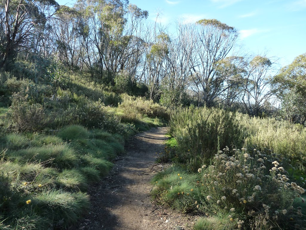 Walking track west of golf Course