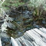 Bridge crossing creek (274391)