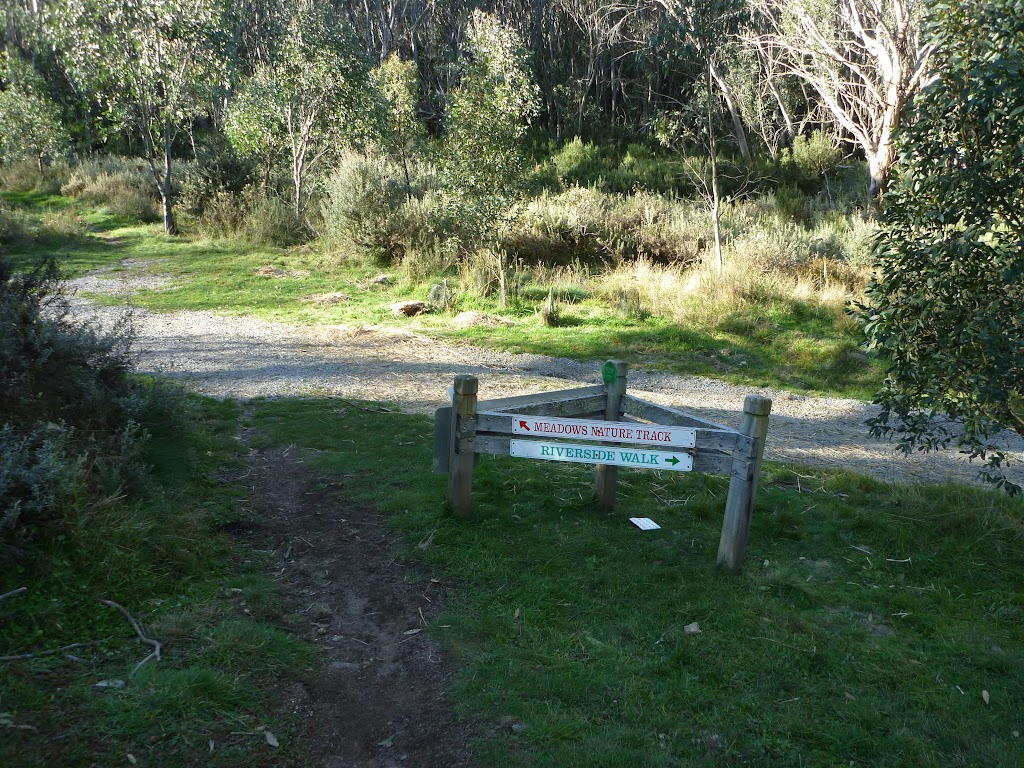 Int of the Golf Course Walk and Meadows Link trail (274616)