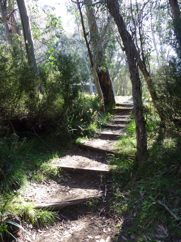 Steps Int of Merritts nature track and Sundowner service trail