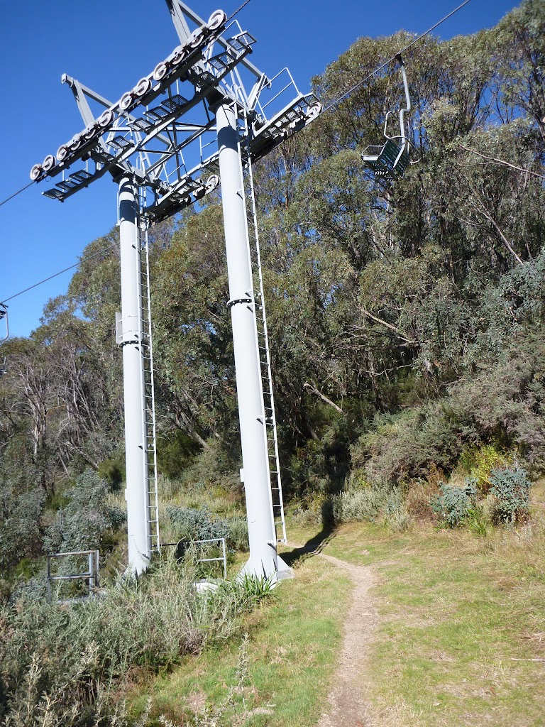 Walking under Snowgums Chairlift