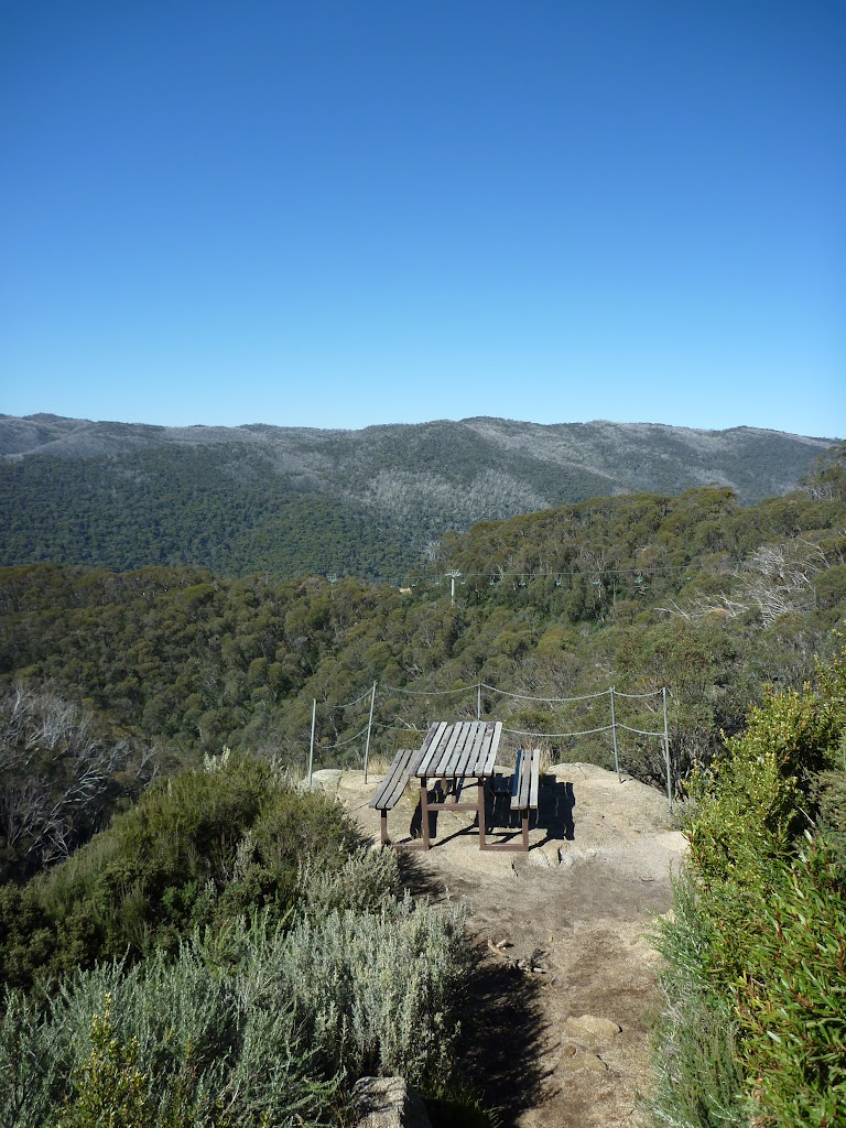 Great view from the picnic table on Merrits Nature Track